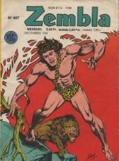 Zembla -407- La cité de pierre