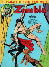 Zembla -64- La plantation des brumes