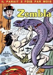 Zembla -72- Le mystère du train bleu