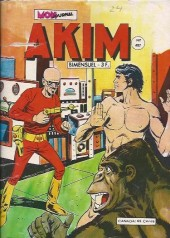 Akim (1re série) -487- Le secret de la grande idole