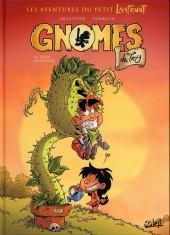 Gnomes de Troy