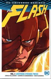 Flash (the) (2016) -INT01- Lightning strikes twice