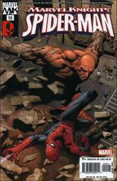 Marvel Knights: Spider-Man (2004) -15- Wild blue yonder part 3