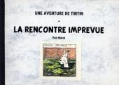 Tintin - Pastiches, parodies & pirates -31- La Rencontre imprévue