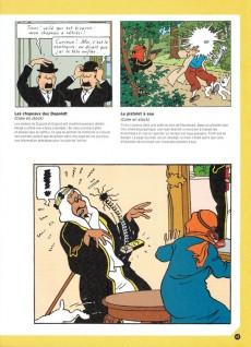 Extrait de Tintin - Divers - Le rire de Tintin, les secrets du génie comique d'Hergé