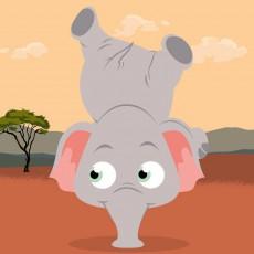 Extrait de (AUT) Beno - Adam, L'Eléphant