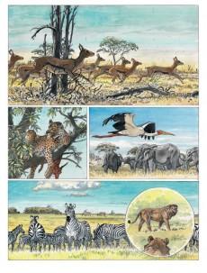 Extrait de Afrika (Hermann) - Afrika