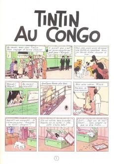 Extrait de Tintin -2- Tintin au Congo