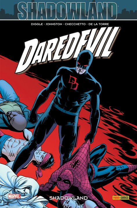 Daredevil - tome 22 : Shadowland