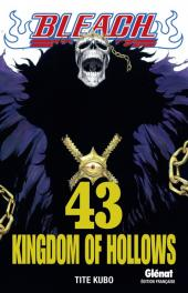 Bleach -43- Kingdom of Hollows