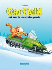 Garfield -25c2012- Garfield est sur la mauvaise pente