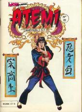 Atemi -22- Le maître des maîtres