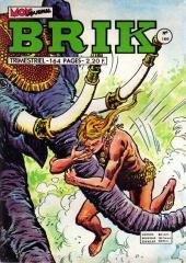 Brik (Mon journal) -166- La princesse maudite