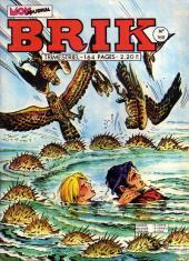 Brik (Mon journal) -168- Tombeau à la dérive