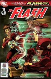 Flash (The) (2010)