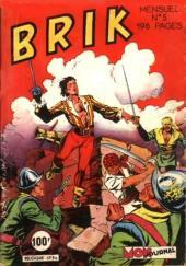 Brik (Mon journal) -5- Brik et ses compagnons préparent leur frégate Le Liberté