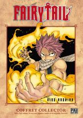 Fairy Tail -19a- Tome 19