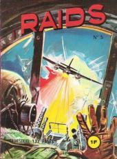 Raids -5- Le deuxième pont