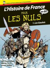 L'histoire de France pour les nuls -1- Les gaulois