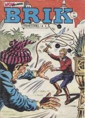Brik (Mon journal) -193- Douze balles dans la peau...