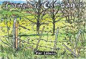 (AUT) Lolmède - Carnet de campagne