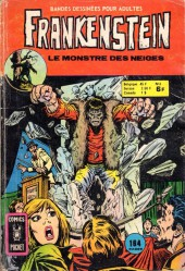 Frankenstein (Arédit - Comics Pocket) -6- Le monstre des neiges