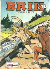 Brik (Mon journal) -157- Les dresseurs d'ours