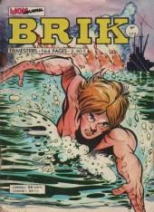 Brik (Mon journal) -172- De pire en... vampire !