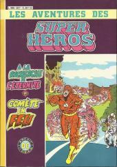 Super Héros -Rec06- Recueil 6017 (12, 13)