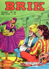 Brik (Mon journal) -30- La félonie du Maharajah