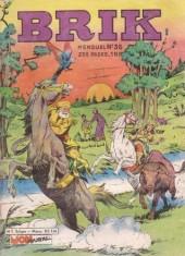 Brik (Mon journal) -36- Les flibustiers du Grand Nord !