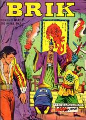 Brik (Mon journal) -40- Dragon Vert