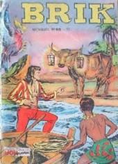 Brik (Mon journal) -68- L'île aux vaches