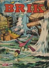 Brik (Mon journal) -83- La rivière d'or