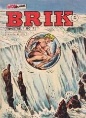 Brik (Mon journal) -158- Le plongeon vers l'inconnu !