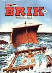 Brik (Mon journal) -159- Le faux espoir