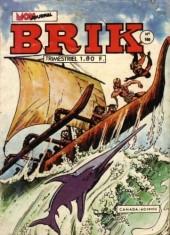 Brik (Mon journal) -160- Agokk, le masqué