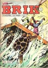 Brik (Mon journal) -170- La terre tremble
