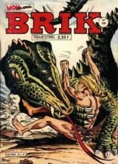 Brik (Mon journal) -180- La petite sorcière