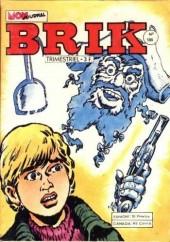 Brik (Mon journal) -186- Le sorcier maudit