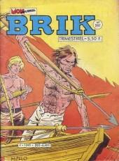 Brik (Mon journal) -207- La loi de la terreur