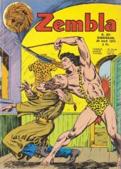 Zembla -201- La tour du sorcier blanc