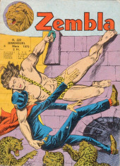 Zembla -222- La cité cachée