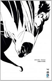 Batman : Dark Victory -INTTL- Amère Victoire - Édition 75 ans