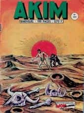 Akim (1re série) -177- Le mystère du Roc Vert