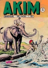 Akim (1re série) -294- Le mystère de la vallée du couchant