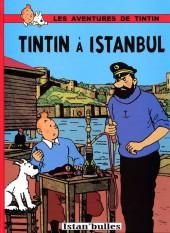 Tintin - Pastiches, parodies & pirates -'- Tintin à Istanbul
