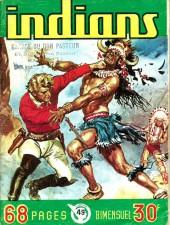Indians -49- Le renard des marais