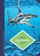 La petite Bédéthèque des Savoirs -3- Les Requins - Les connaître pour les comprendre