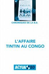 Chronique de la BD -1- L'Affaire Tintin au Congo